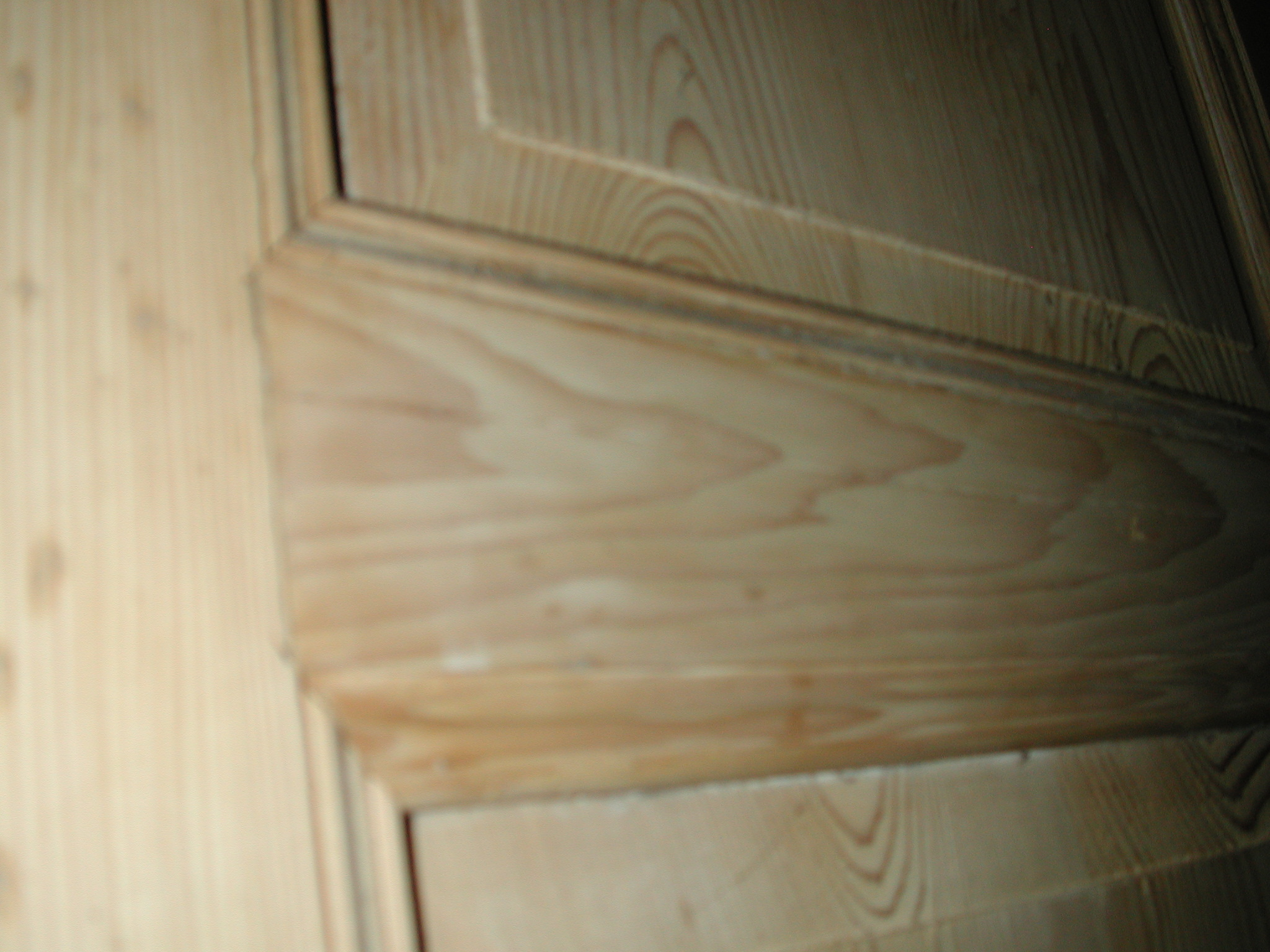 Flügeltür / Zimmertür / Wohnungstür